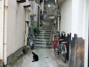 14.10.20 しなまみ海道 002