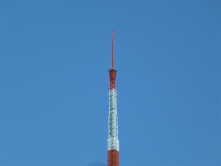 東京タワーant1