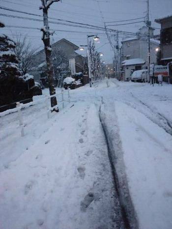 2013-01-14 雪に