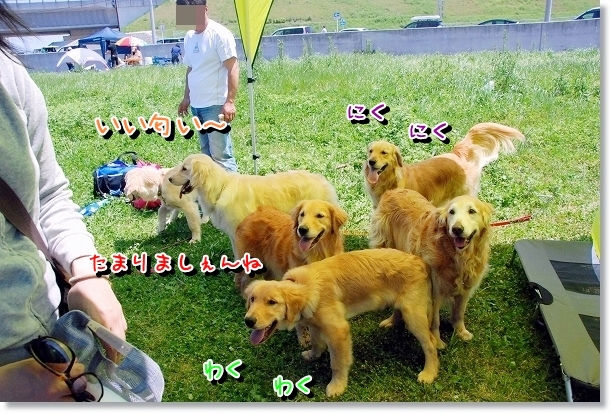 DSC_0011_20120507021413.jpg