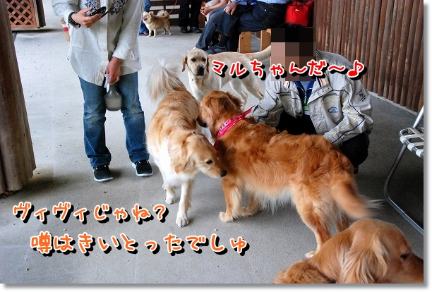 DSC_0021_20120502024042.jpg