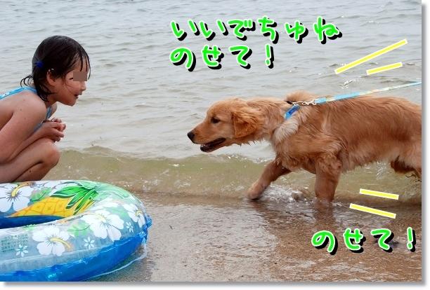 DSC_0022_20120501000703.jpg