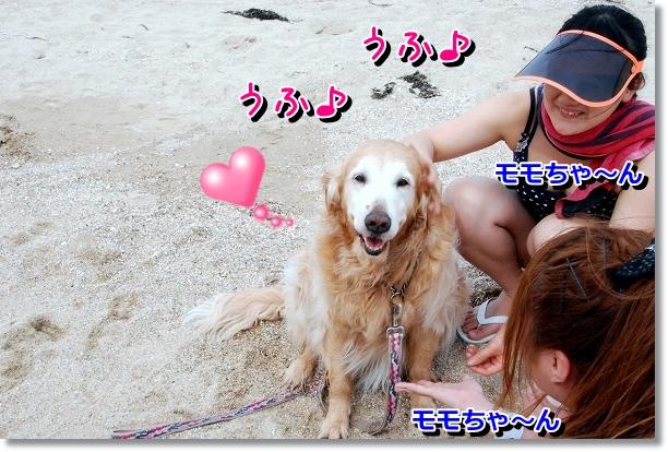 DSC_0066_20120501141046.jpg