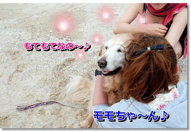 DSC_0067_20120501141045.jpg