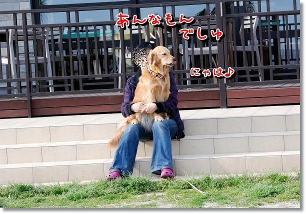 DSC_0076_20120516211746.jpg