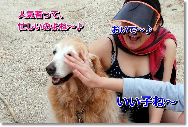 DSC_0079_20120501141043.jpg