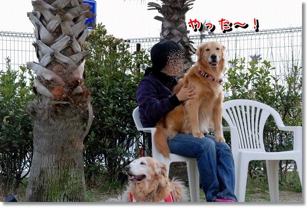 DSC_0098_20120517195206.jpg