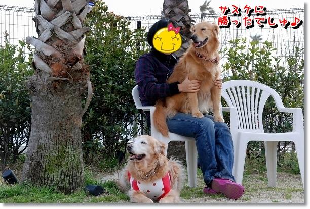 DSC_0099_20120517195244.jpg