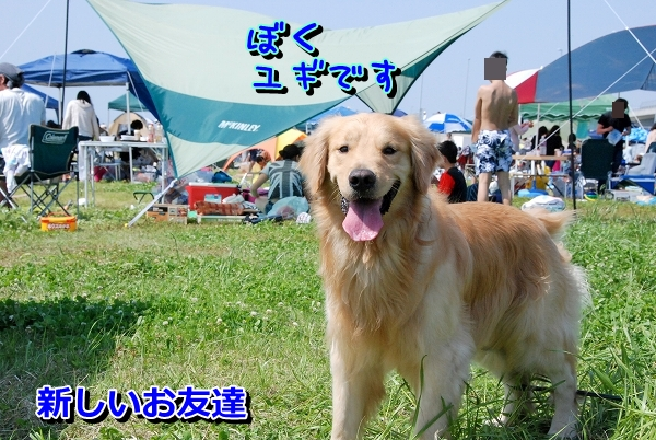 DSC_0139_20120507172104.jpg