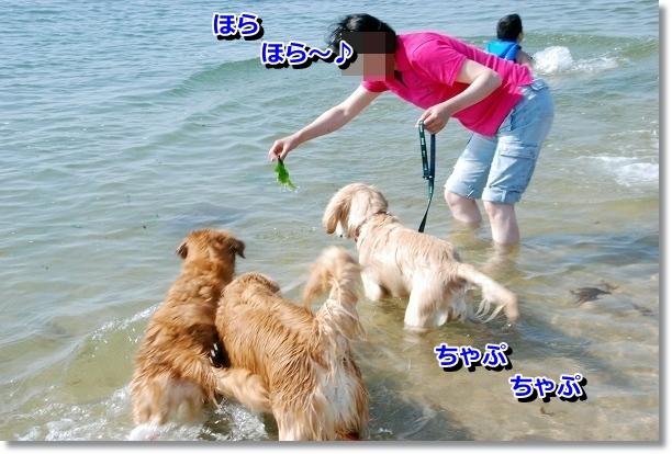 DSC_0204_20120507232107.jpg