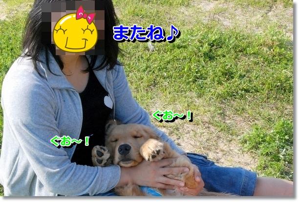 DSC_0298_20120507232246.jpg