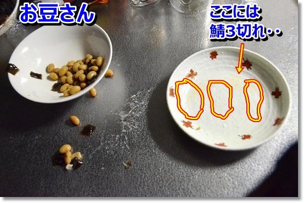 DSC_0915-1.jpg