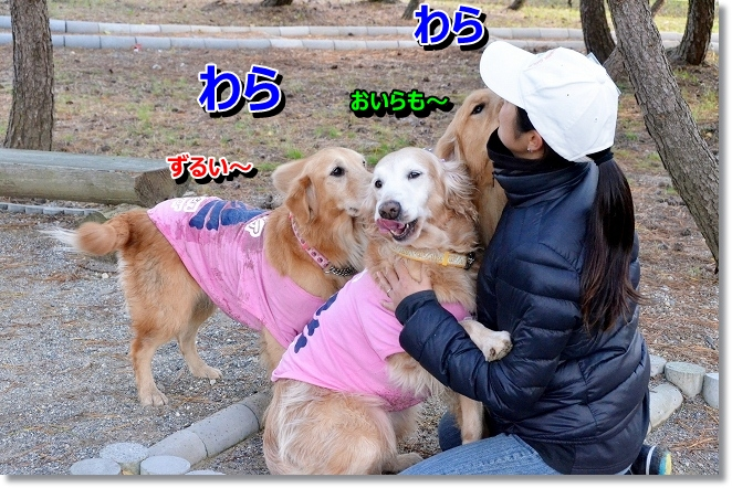 DSC_1708.jpg