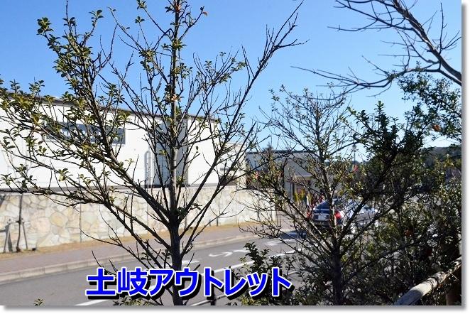 DSC_2604_20121217014612.jpg