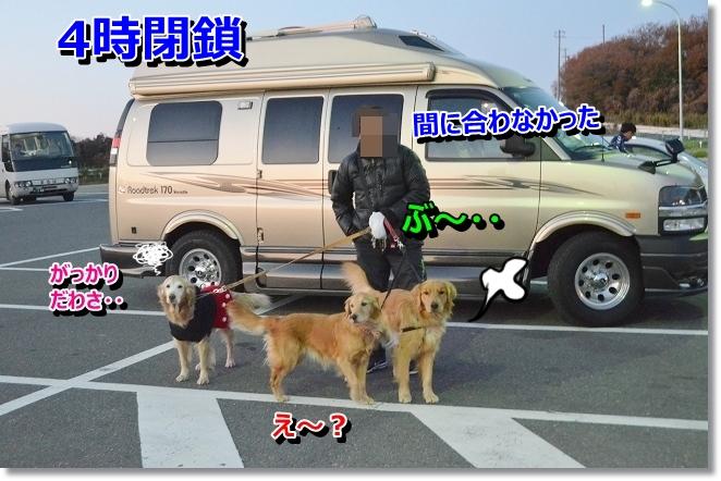 DSC_2631.jpg