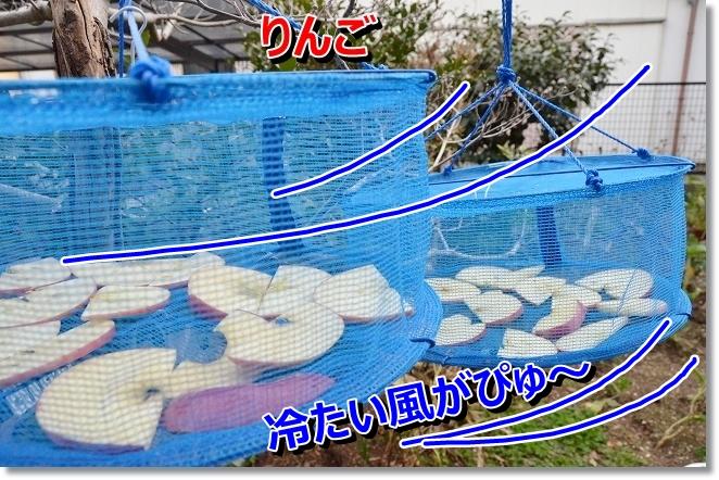 DSC_3231_20121223000500.jpg