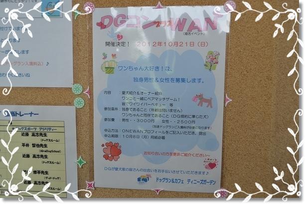 DSC_3512.jpg