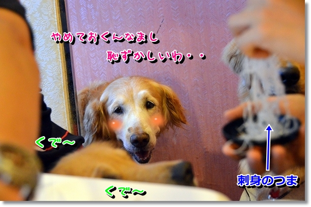 DSC_4990.jpg