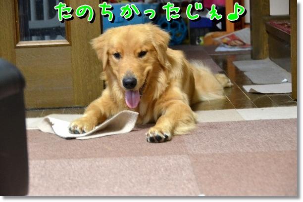 DSC_5775.jpg