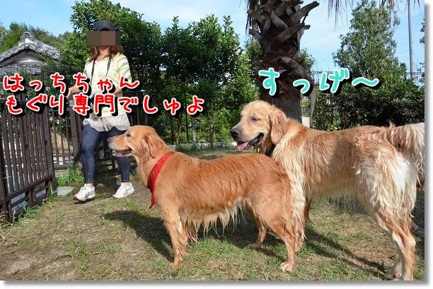 DSC_5878.jpg