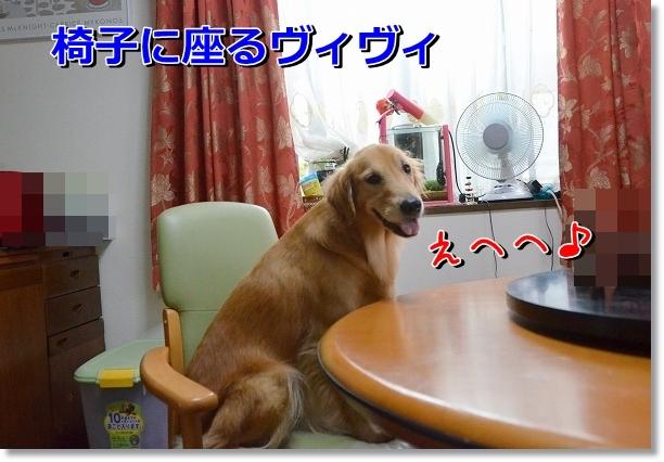 DSC_6707.jpg