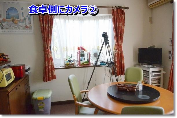DSC_6797.jpg