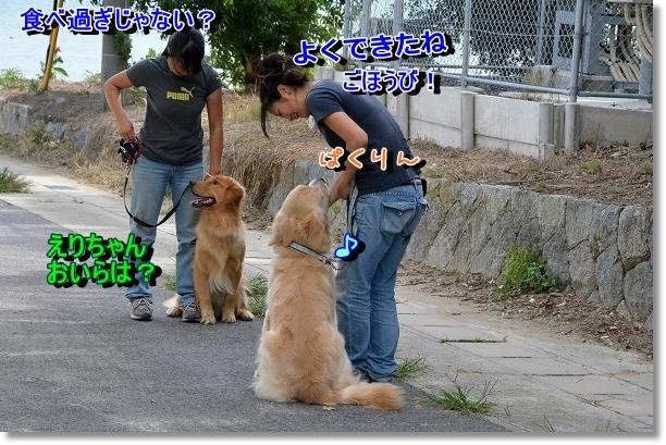 DSC_7010.jpg