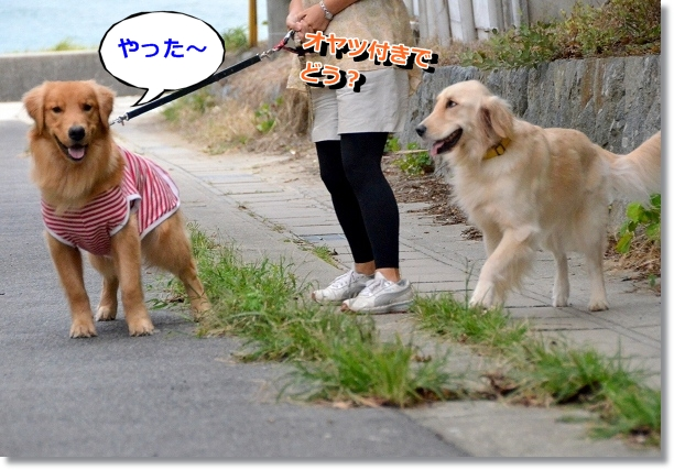 DSC_7076.jpg