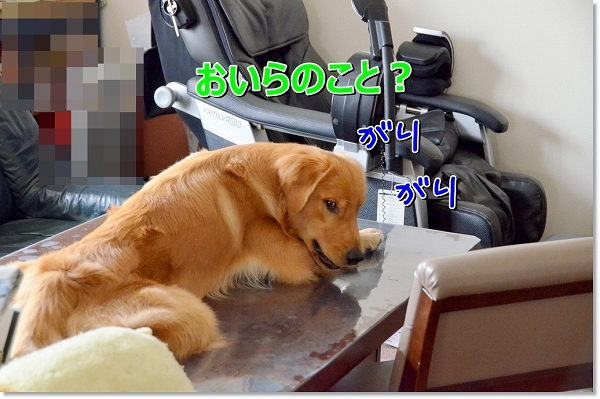 DSC_7603.jpg