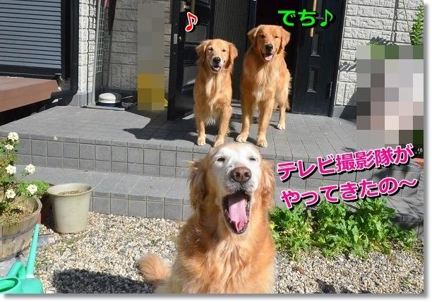 DSC_7760.jpg