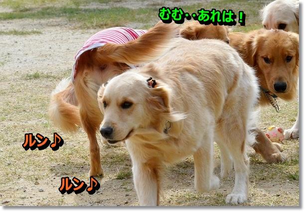 DSC_8770.jpg