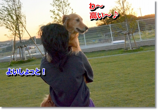 DSC_9144.jpg
