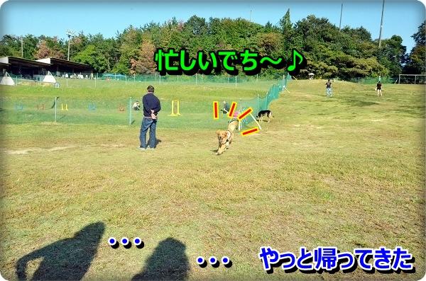 DSC_9187.jpg