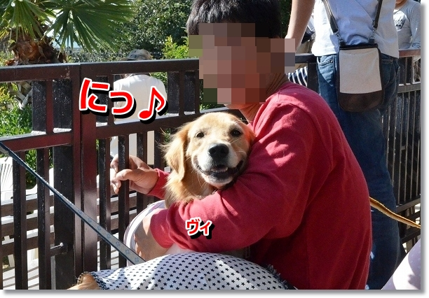 DSC_9669_20121102211715.jpg