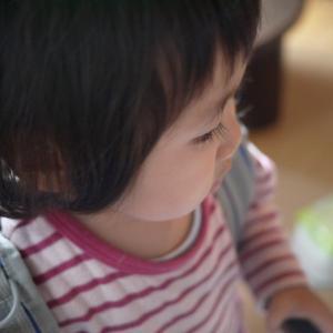 P1030094_convert_20121121213052.jpg