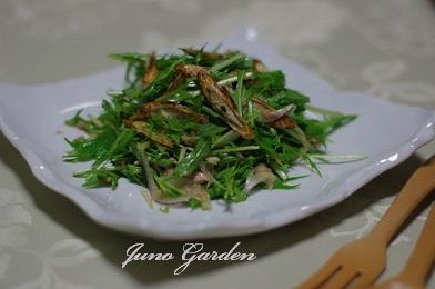 サラダ水菜牛蒡