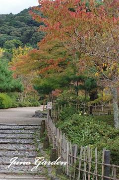 11061円山公園