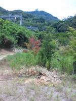20120812_SBSH_0001.jpg