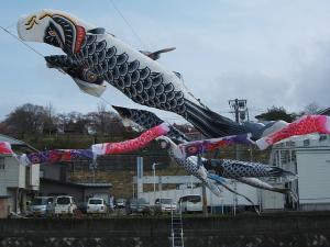 鯉のぼり07