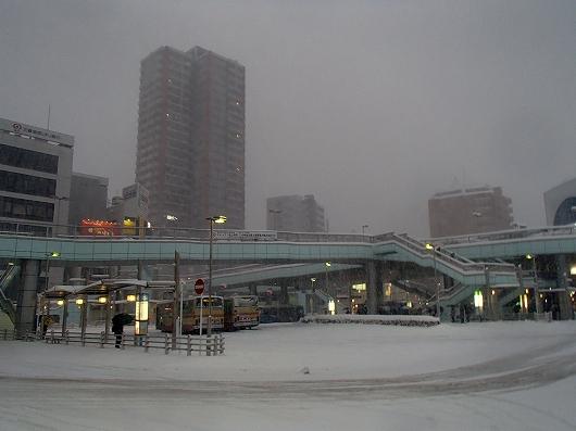 大雪01-20140208