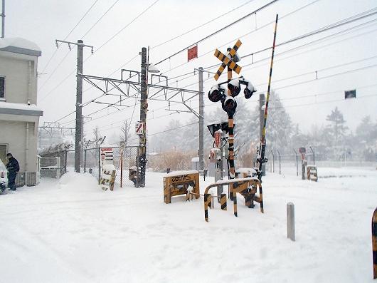 大雪03-20140208