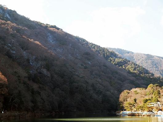 嵐山20131229