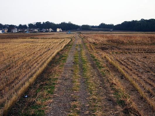 田んぼのあぜ道02-20131231