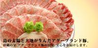 アグー豚header_image1