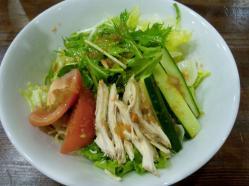 冷しサラダ麺