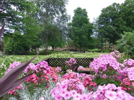 中央の太鼓橋を囲むような庭園