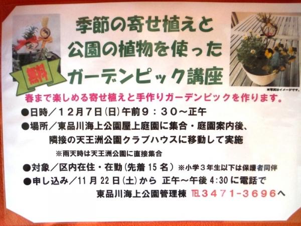 fuyu_2014111614120942f.jpg