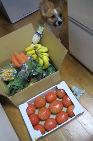 幸田で買った野菜