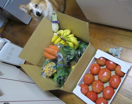 幸田の野菜