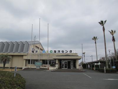 竜洋海洋センター